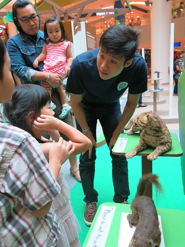 008-festival-of-biodiversity-2013-vivocity-14-july-day2[Joelle Lai]