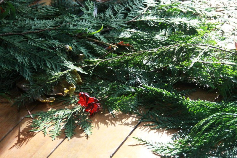Grief Retreat includes lots of cedar for healing and beauty