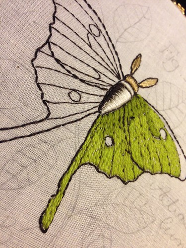 Luna moth WIP - pattern via Urban Threads