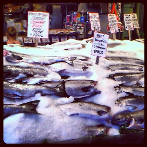 Pike Fish Market by @MySoDotCom