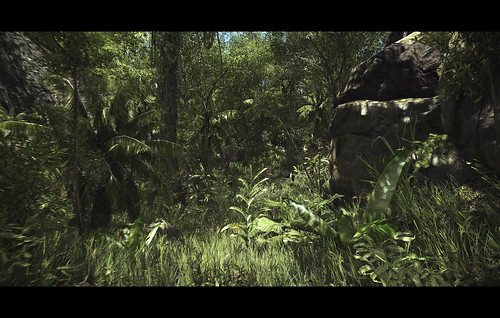 Video Capture - Jungle