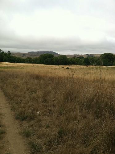 Meadow at Bear Valley trailhead