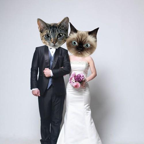 Singapore Lifestyle Blog, Singapore Wedding Blog, Pre-wedding photoshoot, Wedding Photoshoot, Wedding Photoshoot in Korea, Pre-wedding Photoshoot in Korea, nadnut prewedding photoshoot, nadnut wedding photoshoot