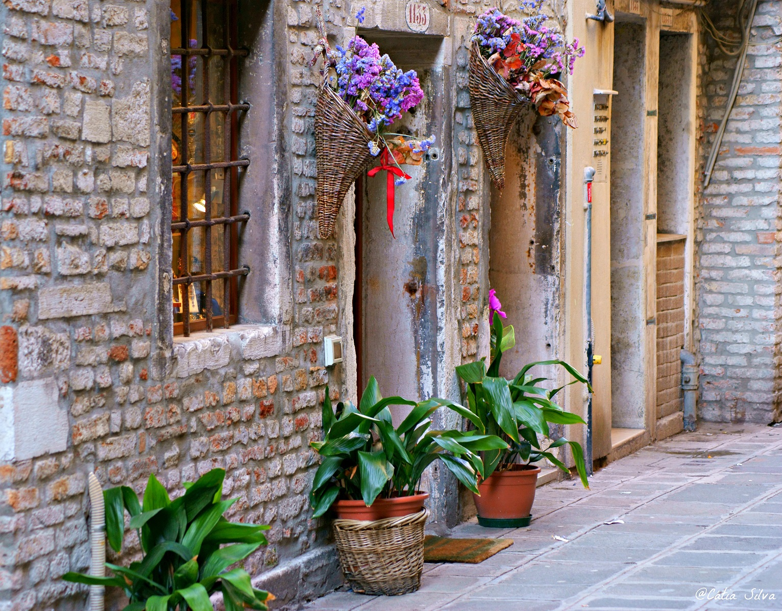 Venice Italia (22)