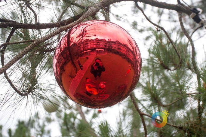 A Manor Christmas Morning - Our Awesome Planet-53.jpg
