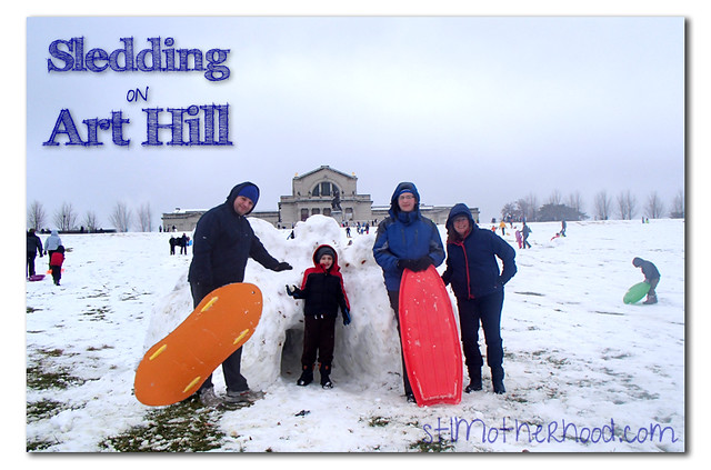 Sledding on Art Hill, St. Louis