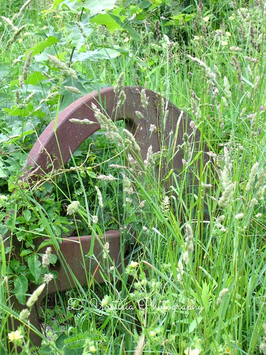 Rusted Old Machinery Part