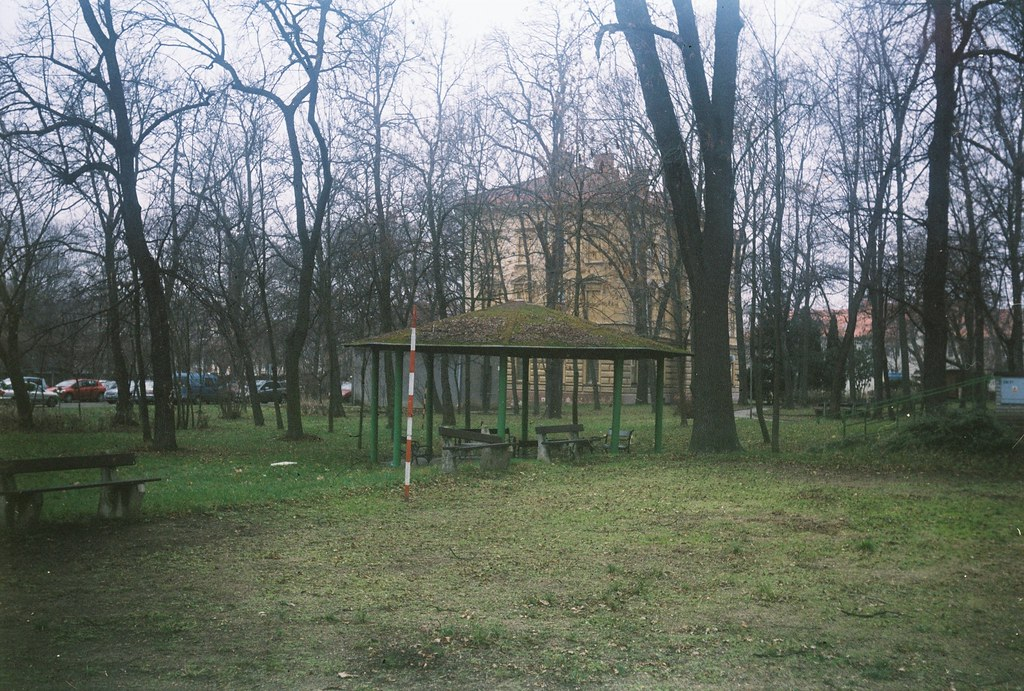 Agfa Billy Record 7.7 - Gazebo in the Psychiatric Hospital