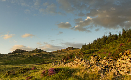 Lumps and Bumps - A Summer evening on Clogwyn Pryfed