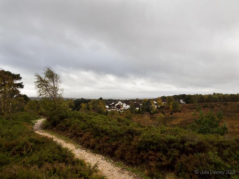 Canford Heath