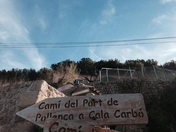 Excursión a pie de Puerto Pollensa a Cala San Vicente