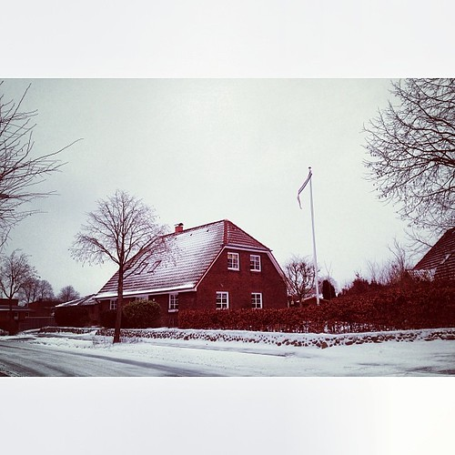 More snow today  #snow #winter #beauty #flensburg by Madeleine Winnett