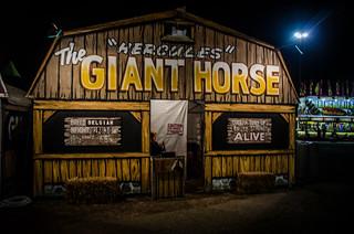 Giant Horse