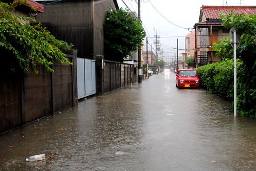 2013 Typhoon 17 020r