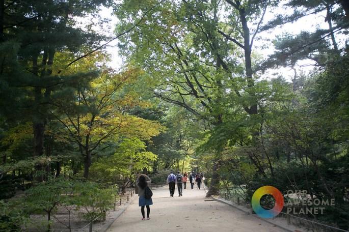 Jongmyo Shrine- KTO - Our Awesome Planet-57.jpg