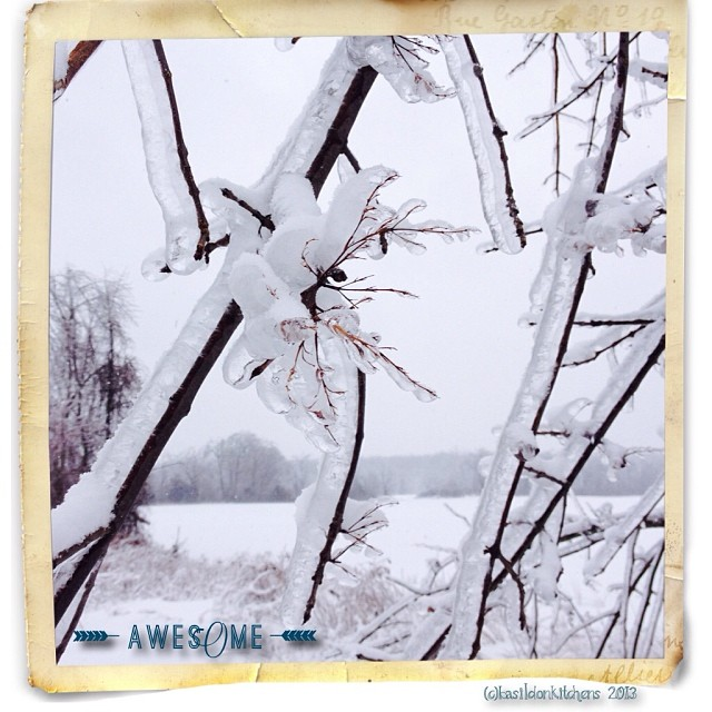 Dec 28 - something awesome {the current weather makes for some awesome sights} #fmsphotoaday #awesome #weather #winter #ice #princeedwardcounty