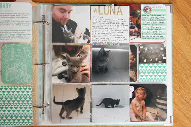 Project Life 2013: Luna's page