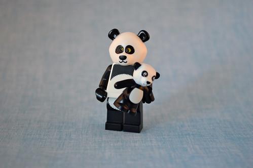 Panda Guy
