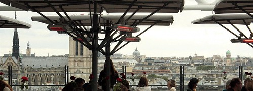 City of Roses  ~ Notre Dame de Paris ~ MjYj by MjYj