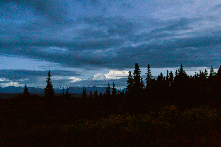 view from wonder lake campground denali national park