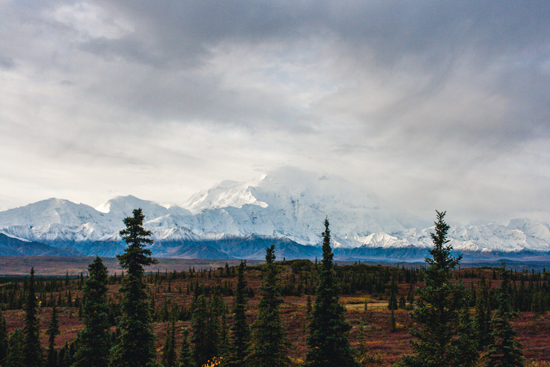 Mt. McKinley View from Wonder Lake Campground Denali National Park
