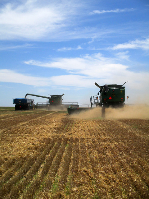 Harvesting while dumping on the go