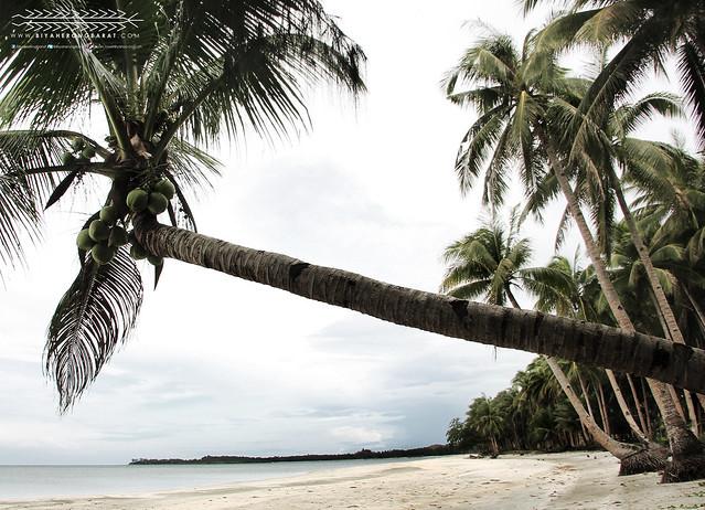 Jawili Beach Tangalan Aklan