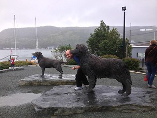 Dan crouched next to a Newfoundlander Dog statue