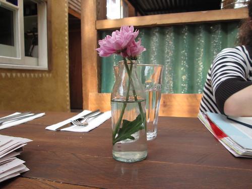 a flower, the newspaper, erin fae
