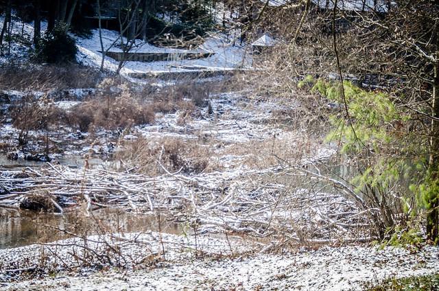 2014 Snow-003