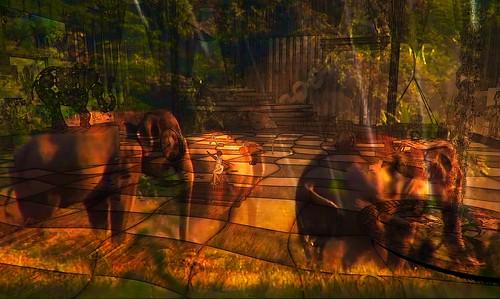 Save the Elephants ! - Somewhere in sl 595 (35 Elephants - Eliza Wierwight - Lek Chailert, LEA4 (136, 180, 30))