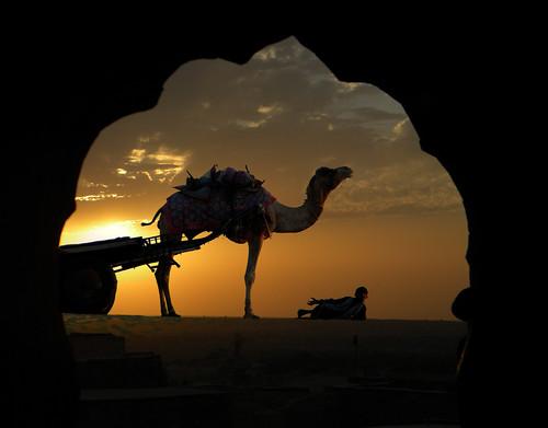 Jaisalmer Hotel Suraj with Camel