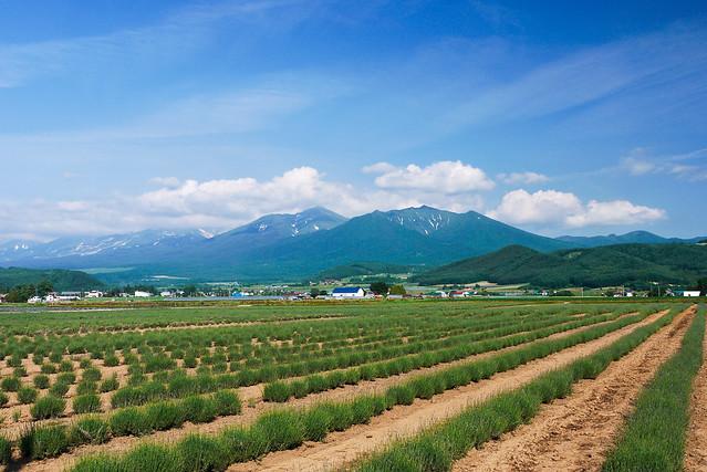 Hokkaido_day6_55