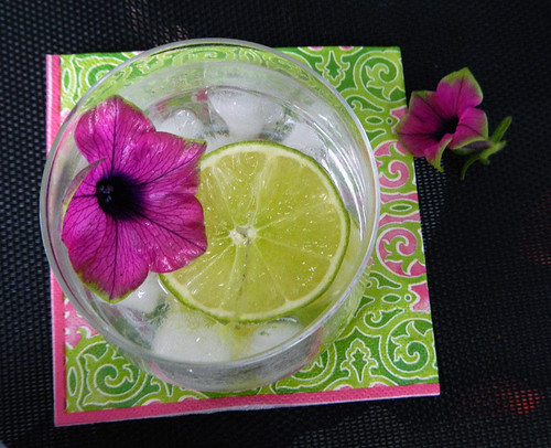 a G&T with a Pink Picasso Petunia