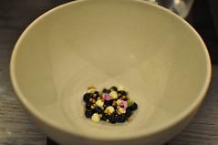 Wild blueberries, geranium crème fraiche, buckwheat