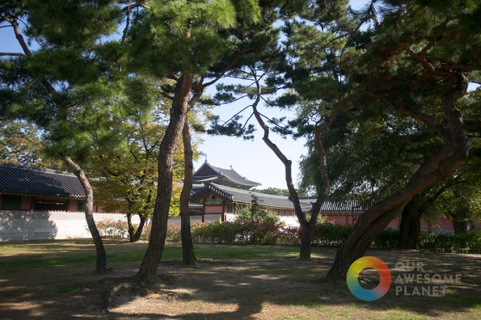 Changdeokgung - KTO - Our Awesome Planet-17.jpg