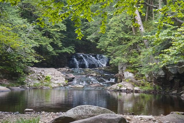 Tenant Creek Falls 0000 Adirondack, NY, USA