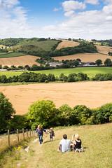 On Giant Hill in #Dorset