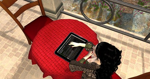 Checking my Blog inworld