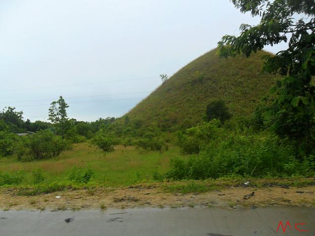 shy hill