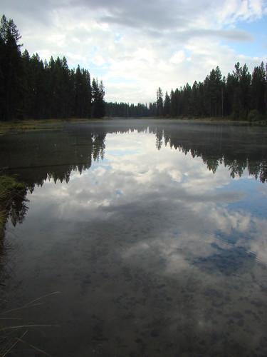 Spring Creek, Sept. 17th 2013