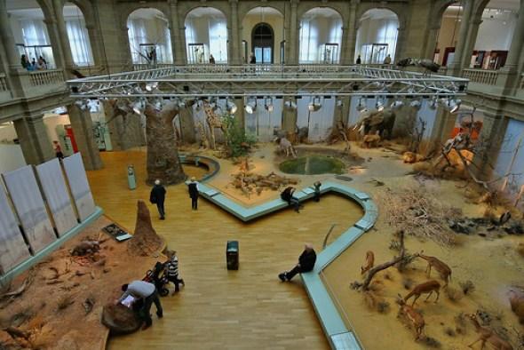 Museum Koening #12