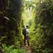 walking in the ravine