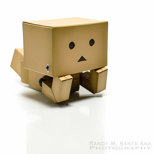 Danbo What Next?