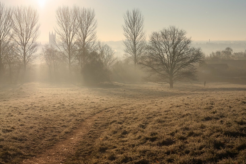 Chaucer Fields