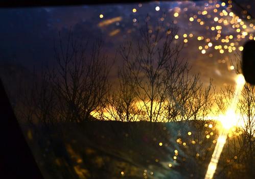 backseat by Gabriella Sunshine
