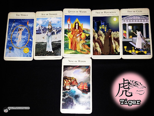 tiger zodiac 2014 reading