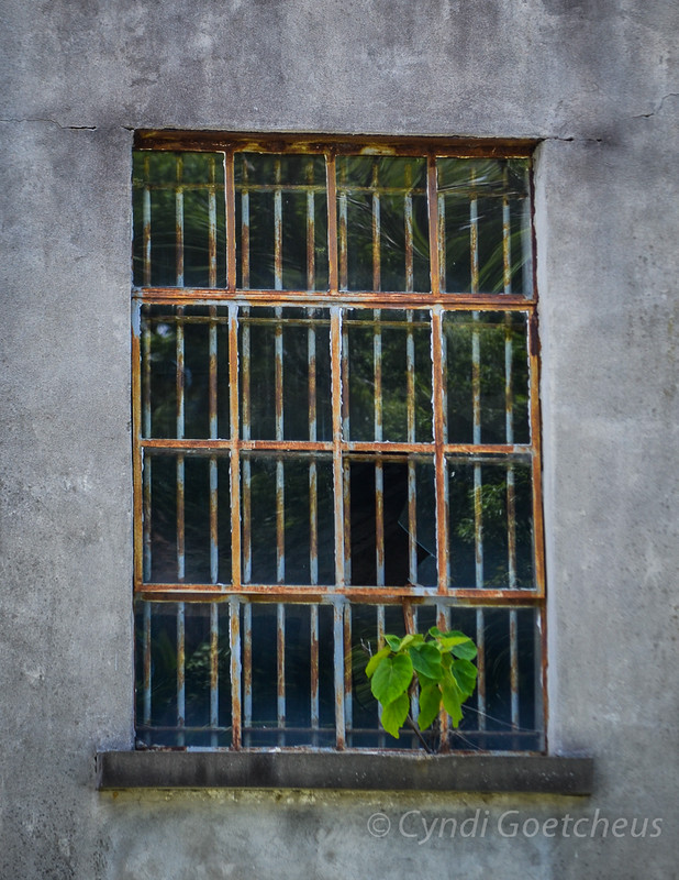 wabi sabi window
