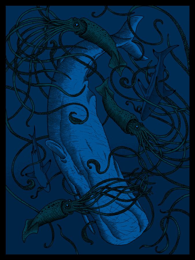 12.09.10.white.whale