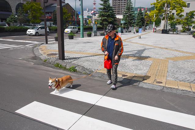 Hokkaido_day5_03